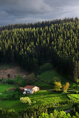 typical basque country house in countryside (Mikel Martnez de Osaba) Tags: sunset sunlight house color building green field grass architecture farmhouse rural countryside colorful farm farming rustic meadow farmland agriculture basque vasco euskadi basquecountry paisvasco pais caserio arrazola atxondo