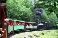 Cass Scenic Railroad (Andy961) Tags: railroad train smoke railway steam wv westvirginia cass excursion csr