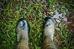 Im Juni / In June (Tinina67) Tags: summer water rain june juni garden gum season puddle spring wasser mud boots wiese rubber tina garten regen gummistiefel nass tinina67
