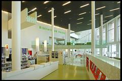 assen cultureel centrum de nieuwe kolk 29 2012 de zwarte hond (weiersstrr) (Klaas5) Tags: