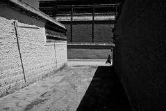 拉卜楞寺 (SinoLaZZeR) Tags: china street people blackandwhite bw blackwhite asia fuji buddhist streetphotography documentary monk buddhism tibet monastery finepix fujifilm labrang tibetan xiahe 中国 寺院 黑白 peking gansu reportage 人 西藏 gannan 寺庙 zhongguo 甘肃 拉卜楞寺 佛教 夏河 x100 亚洲 和尚 藏族 yazhou 甘南 西北 xibei