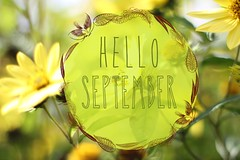 hello september (Teresa Micheile Henderson) Tags: hello nature yellow text bee ornament month
