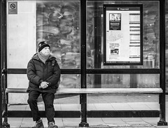 Seated Stop (pootlepod) Tags: street blackandwhite man bus male glass monochrome bench photography waiting sitting framed seat stop shelter stphotographia