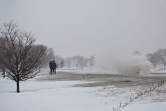 Should We Run? (Lisa Rundell) Tags: snow chicago ice illinois wind lakemichigan blizzard lakefront 2015