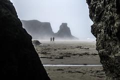 Bandon Beach and Fog 3 - Oregon (Don Thoreby) Tags: statepark mist beach fog oregon surf driftwood pacificocean beaches oregoncoast bandon pinnacles monoliths beachcombing stateparks facerock beachpark bandonbeach