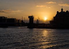Copenhagen sunset