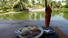 Koh Samui Thai Food Lunch (soma-samui.com) Tags: travel restaurant kohsamui samui bophut thaifood  thailnad    mycafe   tourguidesoma