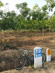 Myanmar, Bago Region, Bago Division, Bago Township, Thar Yar Kone Village Tract (Die Welt, wie ich sie vorfand) Tags: bicycle cycling burma myanmar steamroller surly milestone bago furlong bagotownship bagoregion tharyarkone
