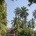Campus de l'université (Mumbai, Inde)