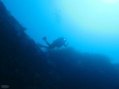 Hey ! Look a lobster... (waielbi) Tags: blue mediterranean mediterraneo sub scuba scubadiving diver plonge subaqua isotta plongeur hyres giens