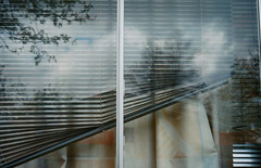 askew detail (ding ren) Tags: film window analog 35mmfilm blinds curtains analogphotography filmphotography dingren