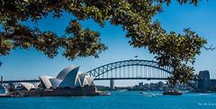 2016 - Sydney - Opera House & Bridge