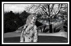 Winter Melting (CallieDel Boa- in and out...) Tags: winter melting secondlife dreams blonde monocrome