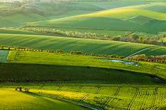 Reboot (S l a w e k) Tags: uk england green yellow landscape sussex evening countryside nationalpark spring scenery brighton farming hills rolling southdowns fiels rapeseed