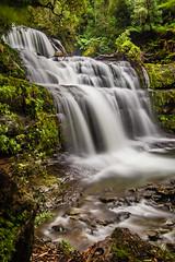 Liffey Falls (Matthew Post) Tags: longexposure canon waterfall rainforest post matthew liffey waterfalls tasmania tamron 6d liffeyfalls 2875mm matthewpost discovertasmania