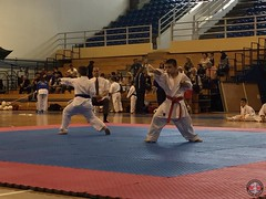 stefanou_15_5_2016_knockdown_261