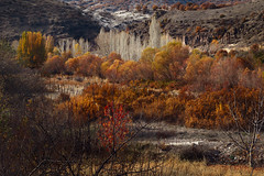 Autumn season at Kirmir Stream (Explored 27.05.2016) (RKAMARI) Tags: travel autumn trees mountain fall nature water rural landscape stream outdoor ankara intimatelandscape kirmirstream