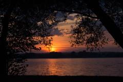 better place to die (Danny Lamontagne) Tags: bridge blue sunset sky orange sun tree water canon river soleil eau coucher ciel nuit arbre fleuve