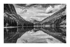 Contemplation (oxfordwight) Tags: france alps reflections landscape mono scenery ngc lac montriond
