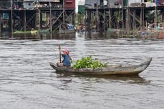 A different life (tmeallen) Tags: cambodia culture kampong highwater tonlesap waterhyacinth dugoutcanoe phluk monsoonseason stiltvillage khmerwoman kampongphluck polingboat tahasriver