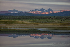 Sunrise Sierra Nevada Reflection (Jeffrey Sullivan) Tags: california copyright usa reflection jeff nature water june sunrise canon landscape photography eos photo united caldera states sullivan mammothlakes sierranevada minarets alpenglow longvalley easternsierra 2016 leevining monocounty bannerpeak mtritter 5dmarkiii