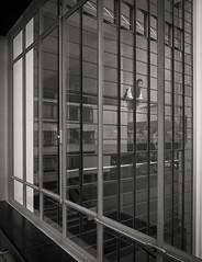 Bauhaus (schromann) Tags: windows walter facade industrial steel bauhaus glas fassade dessau stahl gropius mullions dessaubauhaus 20160429
