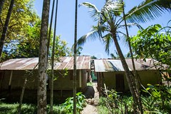 5D8_7349 (bandashing) Tags: light shadow england house tree green abandoned rural manchester village empty palm hut shade dappled sylhet bangladesh socialdocumentary aoa bandashing taltola akhtarowaisahmed