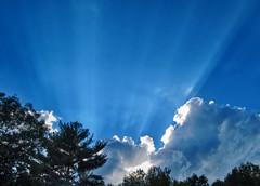Star shine (Astaken) Tags: canon powershot s95 sun clouds rays sky trees