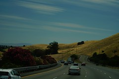 Damn Prius!!! (Alvin Harp) Tags: california road flowers june clouds oakland travels sony journey transportation bayarea highways openroad rollinghills 2016 wispyclouds teamsony sonya7rii alvinharp