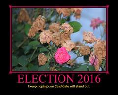 Election 2016 (Tobyotter) Tags: poster fdsflickrtoys motivator 2016