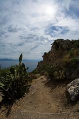 hot path (REDda_ge) Tags: mila sicilia sicily nikon d7100 sun sea seaside mare cactus sentiero path track pricklypear seascape