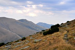 DSC_9508 (szymek_ka) Tags: bulgaria ria bugaria