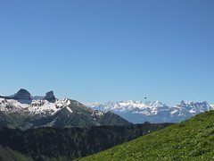 DSCN0326 (keepps) Tags: mountains alps schweiz switzerland suisse vaud rochersdenaye