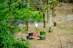 Take a break (Ryukyujin) Tags: garden backyard spot okinawa resting  boke  ryukyu