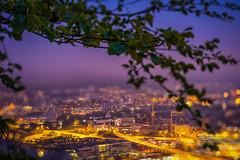 Summer night in Bergen (Paulius Bruzdeilynas) Tags: city summer tree weather norway fog night clouds dark landscape lights norge branch sony perspective norwegian bergen sonyalpha sonya7ii