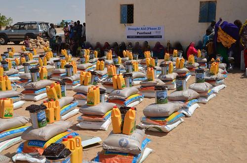 Emergency Food Relief in Puntland