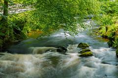 20160618-AA-0159 (andreas.abzieher) Tags: longexposure canon river gitzo canonef24105 canon6d gitzotraveler