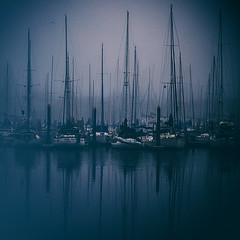 Gulf Coast Fog in Blue (slight clutter) Tags: morning blue seascape fog marina boats outdoors moody texas foggy mysterious sailboats soupy gulfcoast foggymorning squarephoto