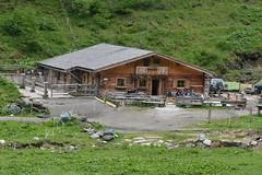 DSC_4721 (d90-fan) Tags: animals outdoors austria tiere sterreich natur pferde schnecke rauris fohlen hohetauern tauern krumltal murmeltiere raurisertal