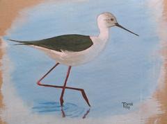 Oiseau Echasse blanche - peinture  l'huile - france (TomiliTroy) Tags:  peinture blanche oiseau chasse lhuile tomilitroy