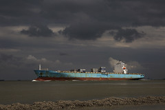 MAERSK DHAHRAN (angelo vlassenrood) Tags: netherlands canon boot photo shoot ship shot picture nederland vessel cargo container angelo photoshot schip westerschelde walsoorden maerskdhahran eos5diii