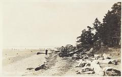 c. 1925 Stride Real Photo Postcard #28 - The  Beach at Crescent (Beach), B.C. (WhiteRockPier) Tags: boat bc britishcolumbia postcard crescent postcards coastline crescentbeach stride semiahmoobay triggs triggsboathouse