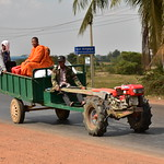 Buddhist Monks Riding Tractor thumbnail