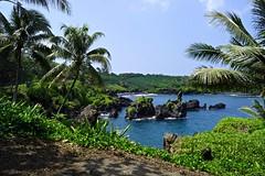 Wainapanapa State Park (Shauna Norrbom) Tags: hana maui hawaii wainapanapa state park