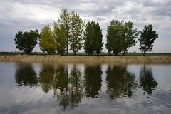 imperfect mirror (Capturedbyhunter) Tags: portugal k rio river landscape mirror pentax outdoor 28mm santarm fernando 35 marques smc waterscape k1 ribatejo coruche sorraia caador fajarda