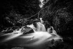washed away (jochenlorenz_photografic) Tags: longexposure trees blackandwhite nature water contrast river landscape flow austria waterfall nikon rocks wasserfall smooth highcontrast tokina explore schwarzweiss nationalgeographic nocolors longtimeexposure upperaustria capturethemoment capturethelight nikonlandscape landschaftsaufnahme austrianlandscape visitaustria tokina1116mm28 nikond7100 igaustria