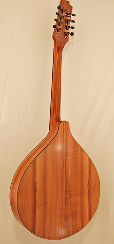 Octave mandolin rear
