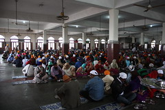 Langar at the Golden Temple (trent_maynard) Tags: india sikh gurdwara punjab amritsar goldentemple harmandirsahib langar