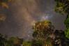 It just makes you feel so... insignificant (Pat Charles) Tags: longexposure night stars nikon nighttime milkyway flickraward nikonflickraward nikonflickrawardgold flickraward5 flickrawardgallery