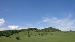 Green field (Gonrah) Tags: mountains forest balkan